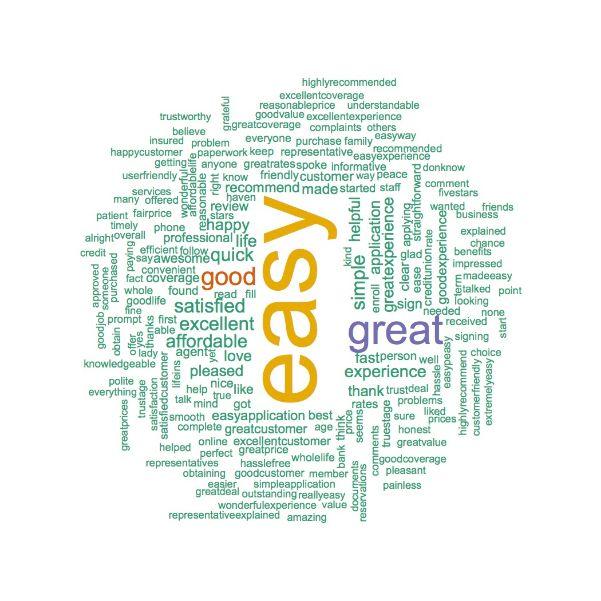 Positive TruStage Word Cloud