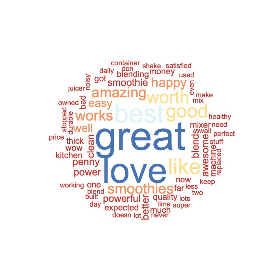 Positive Vitamix 5300 Word Cloud
