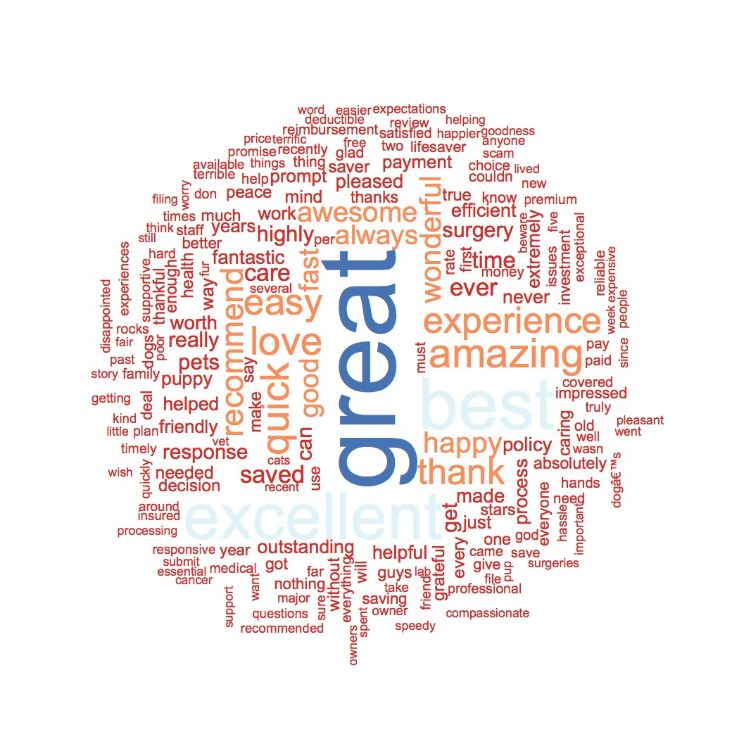 Positive Trupanion Word Cloud