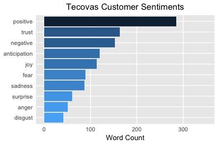 Tecovas Customer Sentiments