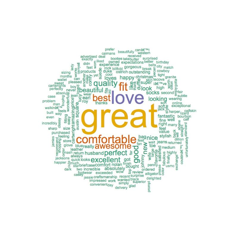 Positive Tecovas Word Cloud