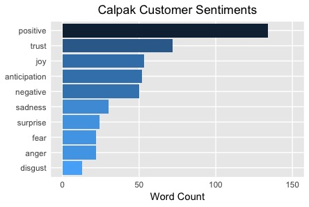 Positive Calpak Customer Sentiments