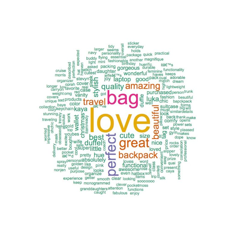 Positive Word Cloud of Calpak Luggage