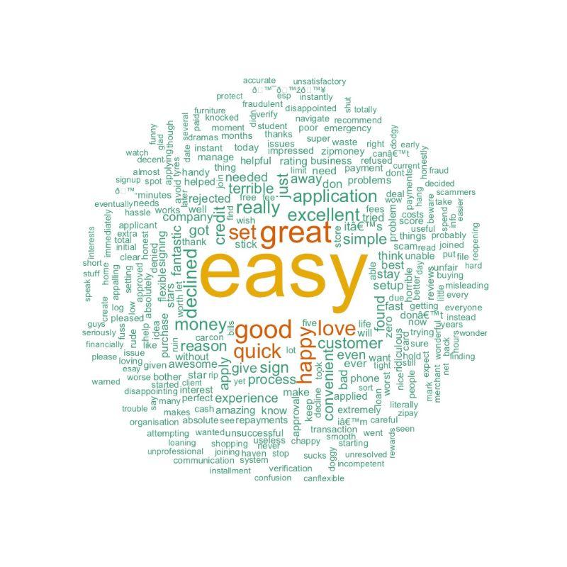 Positive Zip Pay Word Cloud